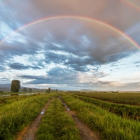 Rainbow Road by James Wheeler. Shared under a Creative Commons, Non-commercial , Share Alike license via flickr. via flickr